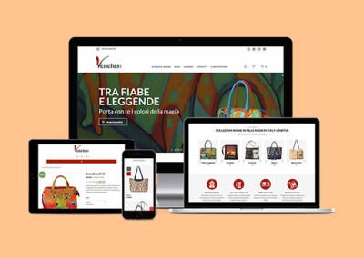 Restyling e-commerce e campagna Web Marketing venetus.it