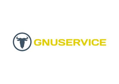 Realizzazione logo Gnuservice